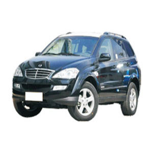 Auto Body Parts for Ssangyong Kyron 2006