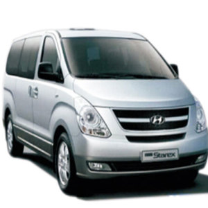 Auto Body Parts for Hyundai Starex 08 H1