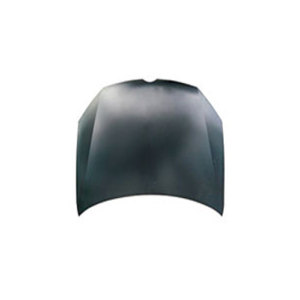 Hood for Volkswagen Golf 2010