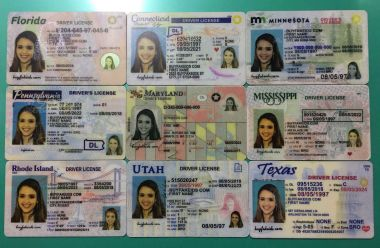 fake IDs confiscated