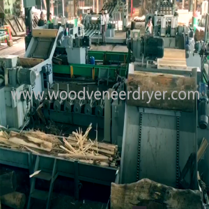Fully Automatic  6 Feet  Veneer Production Line in Indonesia