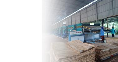 Essiccatore per impiallacciatura di forni a biomassa