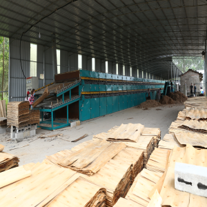 Veneer Roller Dryer Essential Drying Machine in Plywood Making