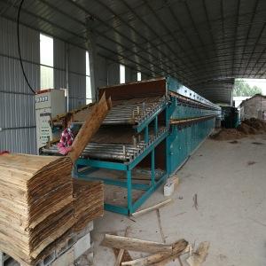 Roller Veneer Dryer Double Deck Heated by Biomass Burner