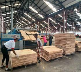 Continuous Veneer Dryer Machine for Plywood Plant