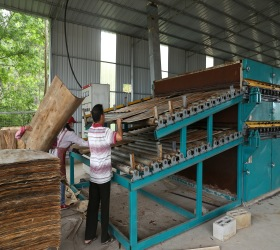 New type veneer dryer heated by direct burning of wood chips dust